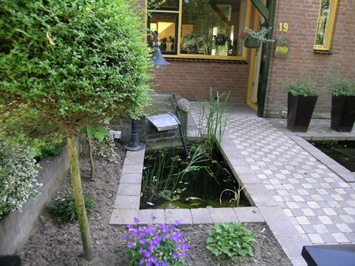 Front entrance to townhouse with small fish pond