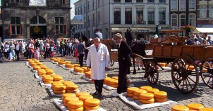 Cheese Market in Gouda