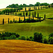 Tuscany - Florence, Siena, and the Chianti! Photo