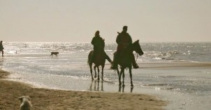 Horseback riding on the beach. Photo courtesy of Netherlands Board of Tourism