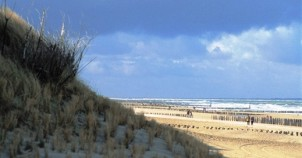 Sand dunes all along the North Sea. Photo courtesy of Netherlands Board of Tourism