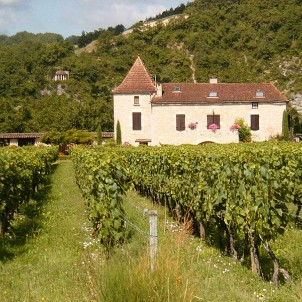 A chateau amongst vineyards. Photo via Wikimedia Commons:John