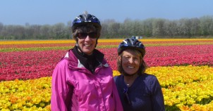 Cycling Holland and the Tulip Fields!